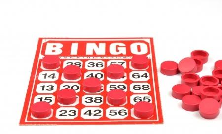 senior bingo